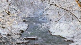Бурное река не покрыто льдом в зиме сток-видео