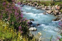 Бурное mountayn Джон Альпы реки Франция Стоковое Изображение