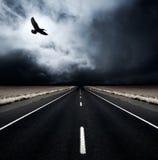 бурные времена Стоковая Фотография RF