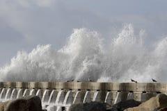 Бурный выплеск волны моря Стоковая Фотография RF