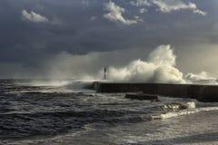 Бурный seascape перед дождем Стоковое фото RF
