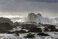Бурный seascape с красивым светом Стоковая Фотография