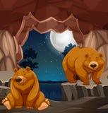 2 бурого медведя в пещере иллюстрация штока