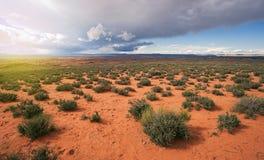 Буря в пустыне Aproaching Аризоны Стоковые Фотографии RF