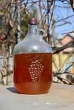Бутиловое домодельное вино виноградины стоковое фото rf