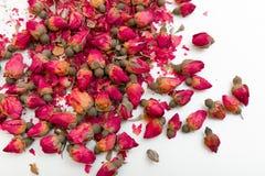 бутоны высушили розовую Стоковые Изображения