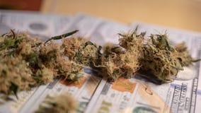 Бутоны марихуаны лежат на деньгах стоковые фотографии rf