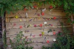 Бутоны цветка Стоковое Фото