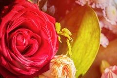 Бутон красной розы в букете Стоковое Изображение RF