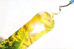 Бутылка вина с штопором на белой предпосылке Стоковое Изображение RF