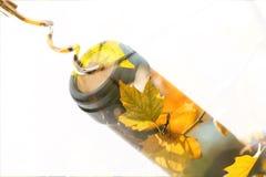 Бутылка вина с штопором на белой предпосылке Стоковые Изображения RF