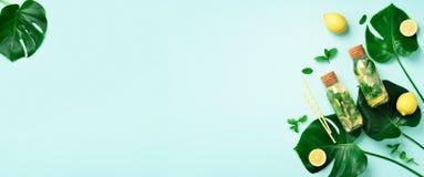 Бутылка воды вытрезвителя с мятой, лимоном и тропическим monstera выходит на голубую предпосылку Плоское положение знамена Цитрус стоковое фото rf