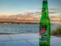 Бутылка в заливе Стоковое фото RF