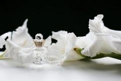 Бутылка дух и цветков Стоковые Изображения