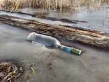 Бутылка замерлась в серый лед стоковые изображения