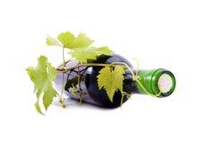 Бутылка и виноградины вина с листьями. Стоковое Изображение RF
