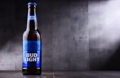 Бутылка пива бутона светлого Стоковая Фотография RF