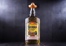 Бутылка текила Сьерры Стоковое Фото