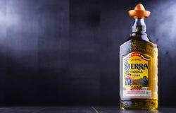Бутылка текила Сьерры Стоковое Изображение RF