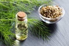 Бутылка эфирного масла фенхеля с свежими хворостинами фенхеля и видит Стоковое Изображение RF