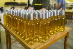 Бутылки белого вина в винодельне Стоковое фото RF