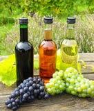 Бутылки вина и виноградины вина Стоковое Фото