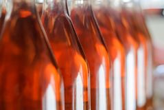 Бутылки вина/франк Каберне подняли бутылки вина в строках в венгерском винном погребе Стоковое Изображение RF