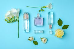 Бутылки дух и цветков на предпосылке цвета Стоковые Фото