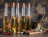 Бутылки оливкового масла с различными специями и травами Стоковое Изображение RF