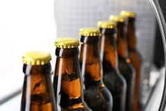 Бутылки пива в винзаводе Стоковые Фотографии RF
