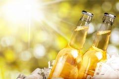 Бутылки пива в льде на запачканной предпосылке Стоковая Фотография