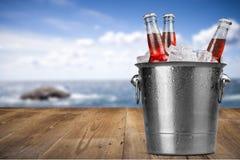 Бутылки пива в льде на море запачкали предпосылку Стоковая Фотография