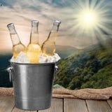 Бутылки пива в льде на море запачкали предпосылку Стоковые Изображения