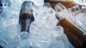 Бутылки пива упакованные в льде акции видеоматериалы