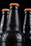 бутылки пива холодные Стоковое Фото