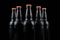бутылки пива холодные Стоковое Изображение RF