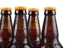 бутылки пива холодные Стоковое фото RF