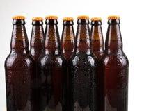бутылки пива холодные Стоковые Фото