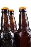 бутылки пива холодные Стоковая Фотография