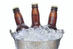 бутылки пива 3 Стоковое Изображение RF