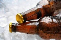 Бутылки свежего пива на loseup льда Стоковая Фотография RF
