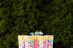 Бутылки свежо сжиманного положения сока апельсина и ягоды на деревянном подносе на красочном столе для пикника сини бирюзы в dapp стоковые фото