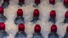 Бутылки с водой погруженные в воду в льде для туристов Стоковое фото RF