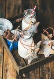 Бутылки с молоком для печенья пряника Санты и рождества домодельные Стоковые Изображения RF