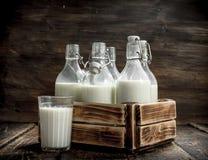 Бутылки с парным молоком в коробке Стоковые Фото