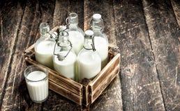 Бутылки с парным молоком в коробке Стоковые Изображения RF