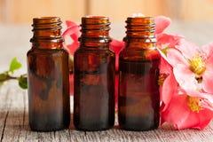3 бутылки эфирного масла с красными цветениями Стоковое Фото