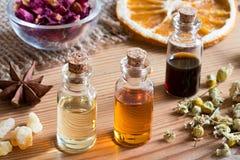 Бутылки эфирного масла с травами и специями Стоковые Изображения RF
