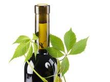 бутылочный зеленый выходит красное вино Стоковые Изображения RF