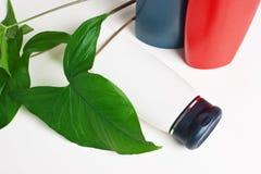бутылочный зеленый выходит shampooand Стоковое Изображение RF
